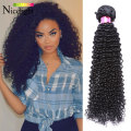 Brazilian Kinky Curly Virgin Hair Bohemian Curly Hair 7A Unprocessed Virgin Brazilian Hair Afro Kinky Curly Weave Human Hair 1B