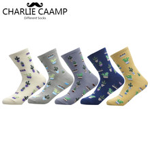 CHARLIE CAAMP 2018 New Women Cotton Plain Jacquard Cactus Fresh And Simple Wild Ladies Trend Harajuku Comfortable Socks G102(China)