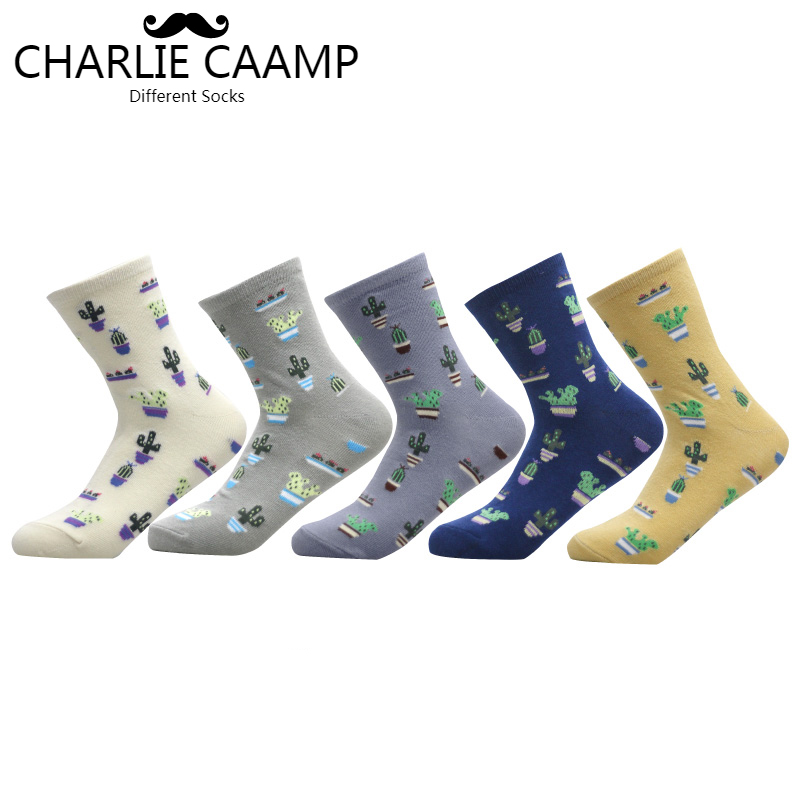CHARLIE CAAMP 2018 New Women Cotton Plain Jacquard Cactus Fresh And Simple Wild Ladies Trend Harajuku Comfortable Socks G102