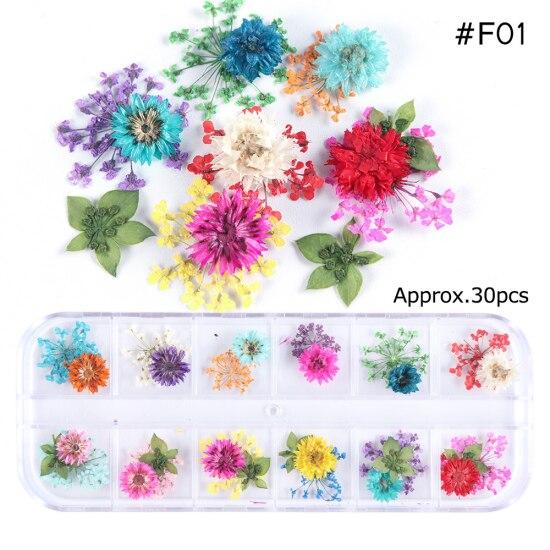 Сухоцветы лист ногтей украшения натуральный наклейка в виде цветка 3D сухой для маникюра ногтей наклейки ювелирные изделия УФ Гель-лак Маникюр TRFL-1 - Цвет: F01