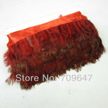 Wholesale!10Yards/Lot Red Dyeing ALMONDS Ringneck Pheasant Plumage Feather Fringe 2-3inches/5-8cm Trimming For Crafting