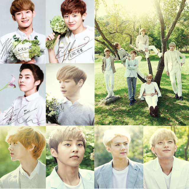 Exo Posters K Pop Wall Stickers Home Decoration Nature White Coated