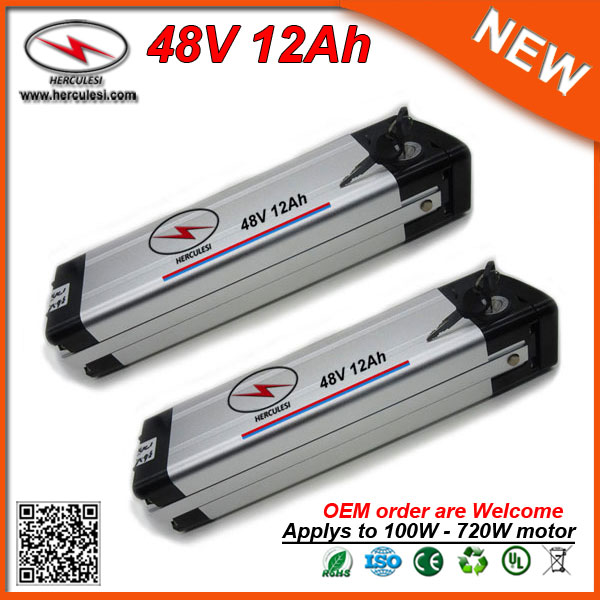 48 Volt Batteries 700w 12ah 48v Lithium Ion Battery In