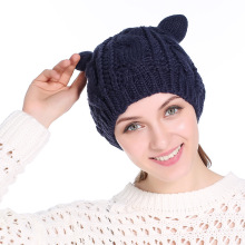 Women's Cat Ear Crochet Braids Knitted Hat