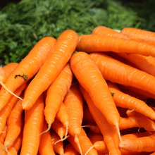 400 Carrot  Great Vegetable crops Seeds organic popular  delicous  Free shipping