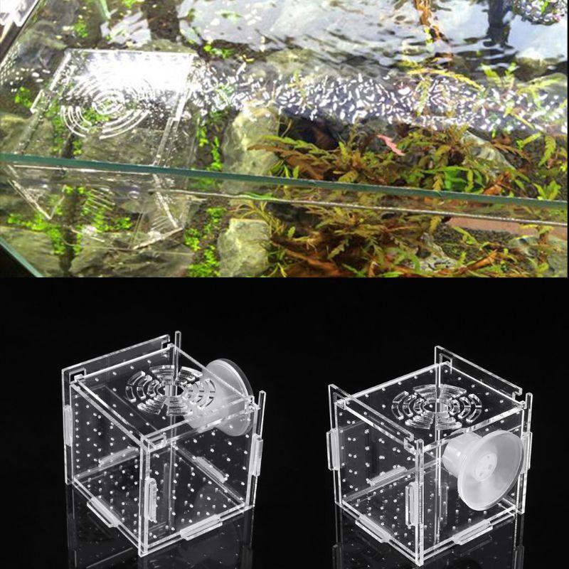 New Aquarium Acrylic Fish Bowls Tank Breeding Isolation Box With Sucker For Baby Fish Hatchery Rooms Incubator Reptile Cage