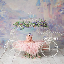 Dvotinst Newborn Photography Props Baby Iron Princess
