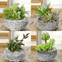 New Simulation Meaty plant Set Small bonsai Artificial flower Green Mini potted vase bird's nest Figurines Home decorat