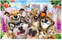 5D Diy Cube Drill Diamond Embroidery Animals Cute Dogs Needlework Cross Stitch Resin Full Diamond Painting