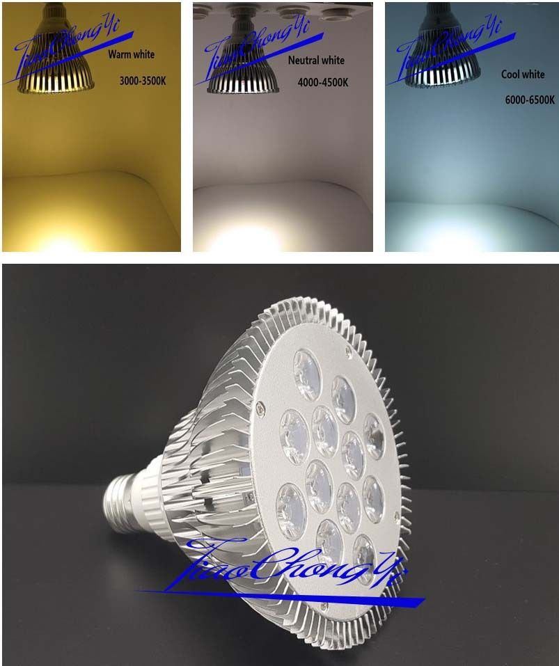 E27 Par38 12x2 Led Indoor Flood