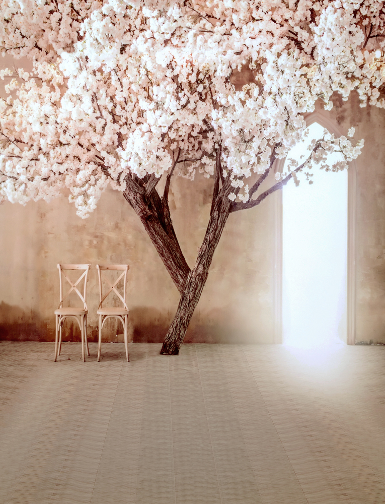 Kate Wedding Backdrop For Photography Tree Plum Chair Outside Flower Wall Backdrop Photography Wedding Background Cm-5826