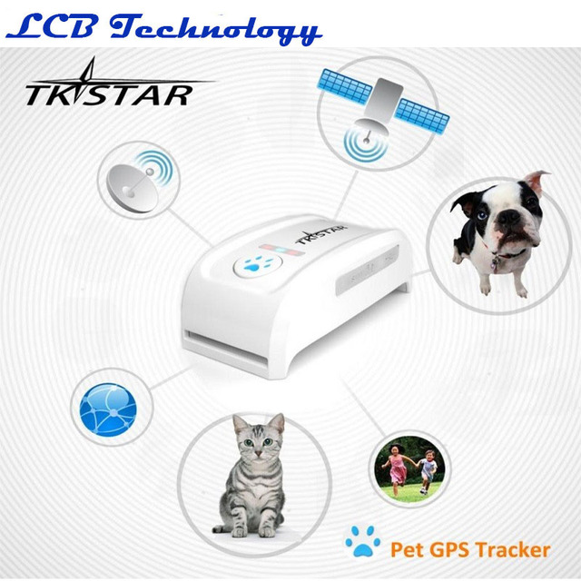 Mini GPS Tracker With Collar for Pets