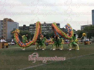 Image 3 - 10m Length Size 5 silk print fabric  8 student  Chinese DRAGON DANCE ORIGINAL stage prop parade Folk Festival  Costume