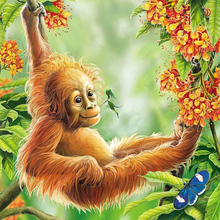 Cute orangutan diamond Embroidery diy painting mosaic diamant 3d cross stitch pictures H662