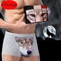 2016 Hombres de La Manera 3D de Alta Calidad Boxer Shorts Hombre 100% Lobo de algodón Ropa Interior Boxer Masculino Bragas Calzoncillos 3 Unids/lote 4XL