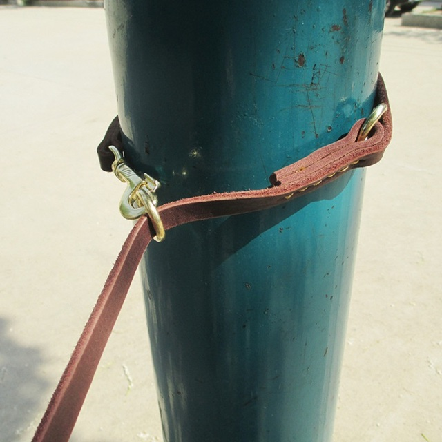 Genuine Leather  Double Dog Leash