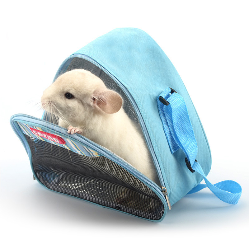 Can Hamsters Travel