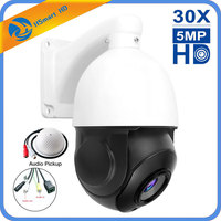 30X Zoom Built in POE 5MP Outdoor HD PTZ IP Speed Dome Camera IR Night CMOS Audio H.264/H265 Compatible With HKVISION XM POE NVR