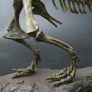 Image 4 - 4D Animal Model Toys Simulation Large Dinosaur Fossil Tyrannosaurus Assemble the skeleton model Toys Home Decoration