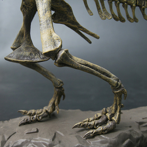 Image 4 - 4D Tier Modell Spielzeug Simulation Große Dinosaurier Fossil Tyrannosaurus Montieren die skeleton modell Spielzeug Dekoration