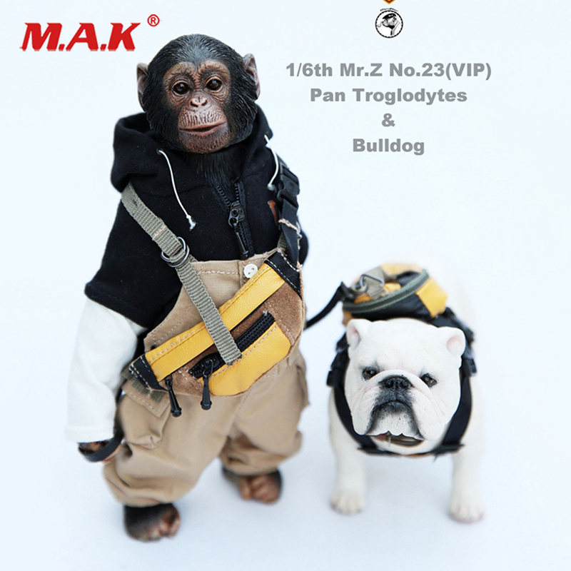 Mr.Z Animal model no.23 1/6 Scale ratio chimpanzee and bulldog with clothing for 12 inches Action Figure CollectionsMr.Z Animal model no.23 1/6 Scale ratio chimpanzee and bulldog with clothing for 12 inches Action Figure Collections