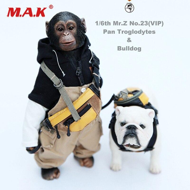Mr.Z 1//6 Pirate Monkey Wine Barrel Treasure Box Animal Figure Set F 12/'/' Doll