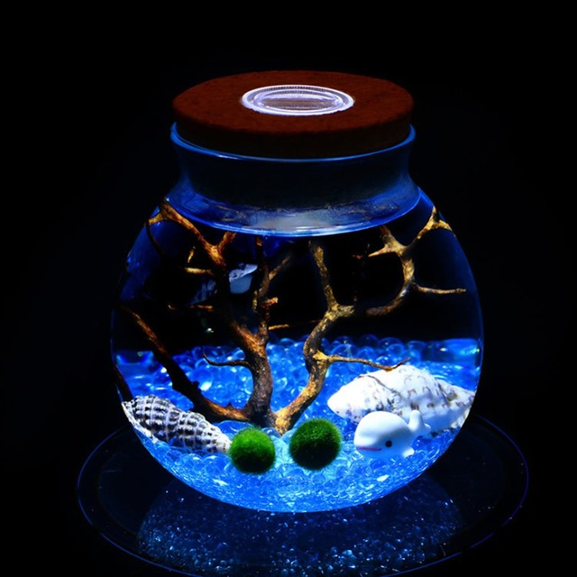 Us 4 99 20 Off 11 Cm Round Glass Jar Terrarium With Colorful Led Light Cork Micro Landscape Ecological Bottle Night Lights 264310 In Led Night