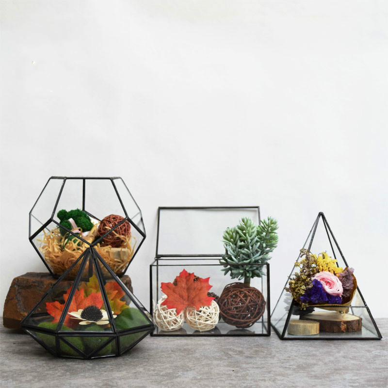 Creative Geometric Glass Greenhouse Cover Micro Landscape Flowers Immortalized Succulents Jewelry Home Furnishing Free Shipping