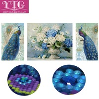 Diamond Embroidery Special Shaped Peacock Animal Diamond Painting Flower Beads Full Diamond Mosaic Cross Stitch Decoration