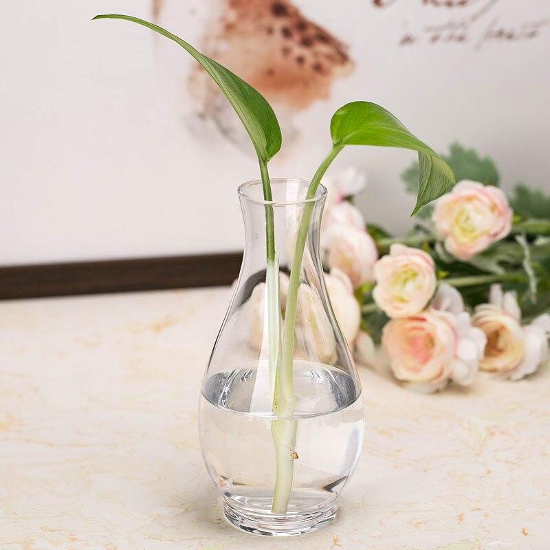 Modern Multicolor Glass Vase Terrarium Transparent Glass Containers