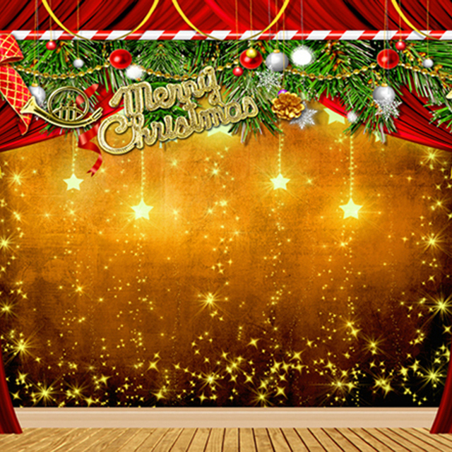 Merry Christmas Photography Backdrops Gold Stars Wooden Floor Green