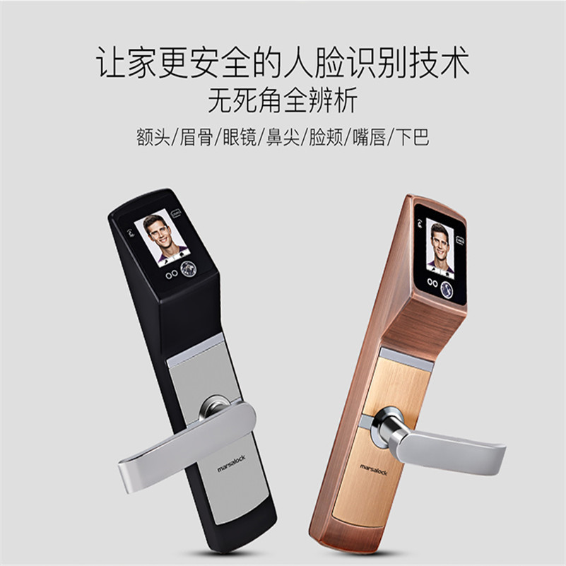 Intelligent Smart Face Recognition locks keyless lock [readstar] speak recognition voice recognition module v3 1