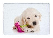 Floor Mat Golden Retriever Puppy Dog Pet with Flower Print Non-slip Rugs Carpets For Indoor Outdoor Living Room