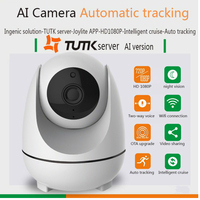 1080P Mini Wifi PTZ IP Panoramic Camera With 360 Degree Monitoring Auto Tracking Camera Mode For