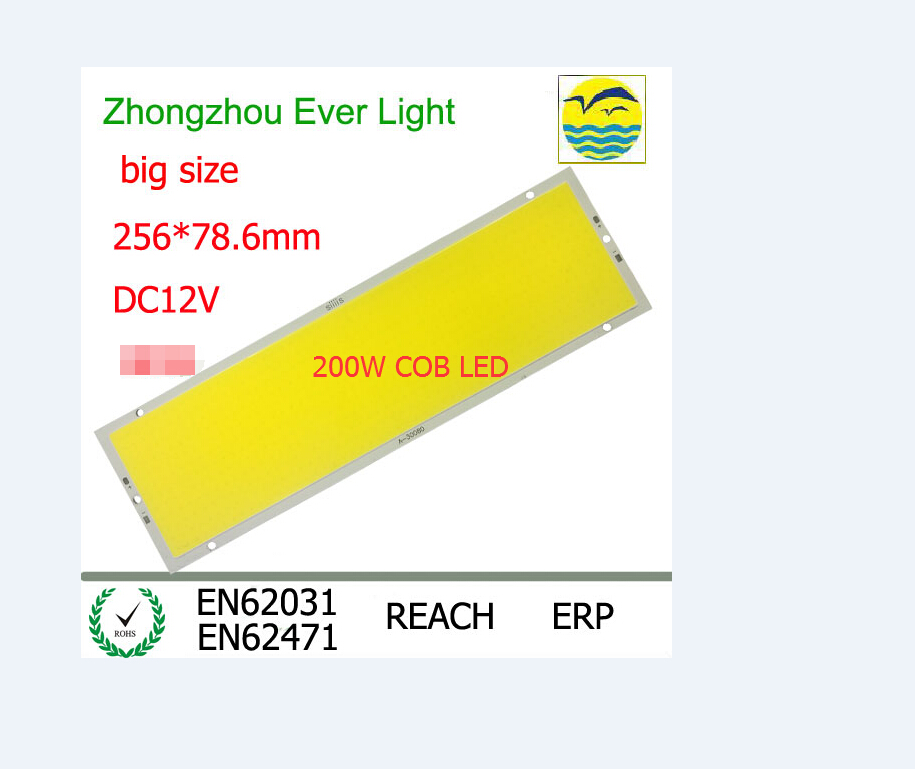 NEW DC 12V 200W 600led chip Strip FLIP COB LED Module panel light L256X78 6MM 20000LM