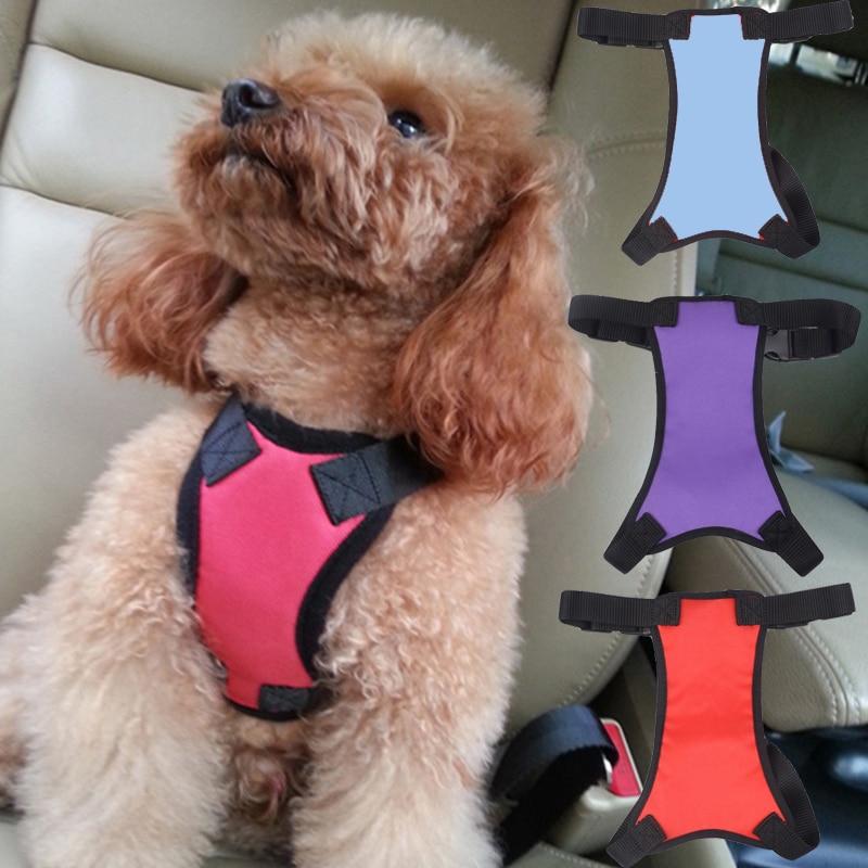 Pet Dog Lead Mesh Harness Halter Soft Vest Leash Webbing Strap Puppy Accessories