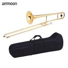 Ammoon – Instrument à vent plat avec étui pour bâton de nettoyage, Trombone Alto, laiton, laque or Bb ton B, embout buccal en Cupronickel