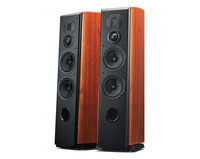 HIVI Swans M6 Home Theater5.0 Stereo Sound System Front M6F 3 way 4th order vented box system professional 6.5 bass midrange