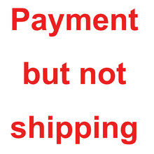 Payment but not shipping on Thinary Electronic, Please do not place an order if you do not buy other product in our shop(China)