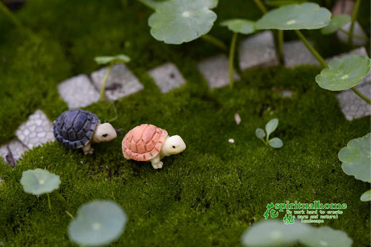 Bryophyte Micro Landscape Meaty Plants Two Colored Small Turtles Tortoise Shells Diy Ornaments Home Decor Miniature Garden