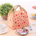 DUDINI Lovely Fruit Pattern Lunch Bag Fashion Leisure Style Canvas Material Insulation Picnic Bag Lunch Bags For Women