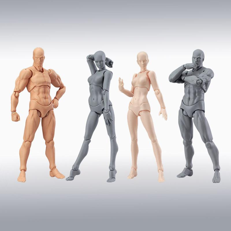 Male Female Action Figure Dolls Human Body Model Toys Figma Archetype Body Drawing Figure Home Gifts Decor expressive figure drawing
