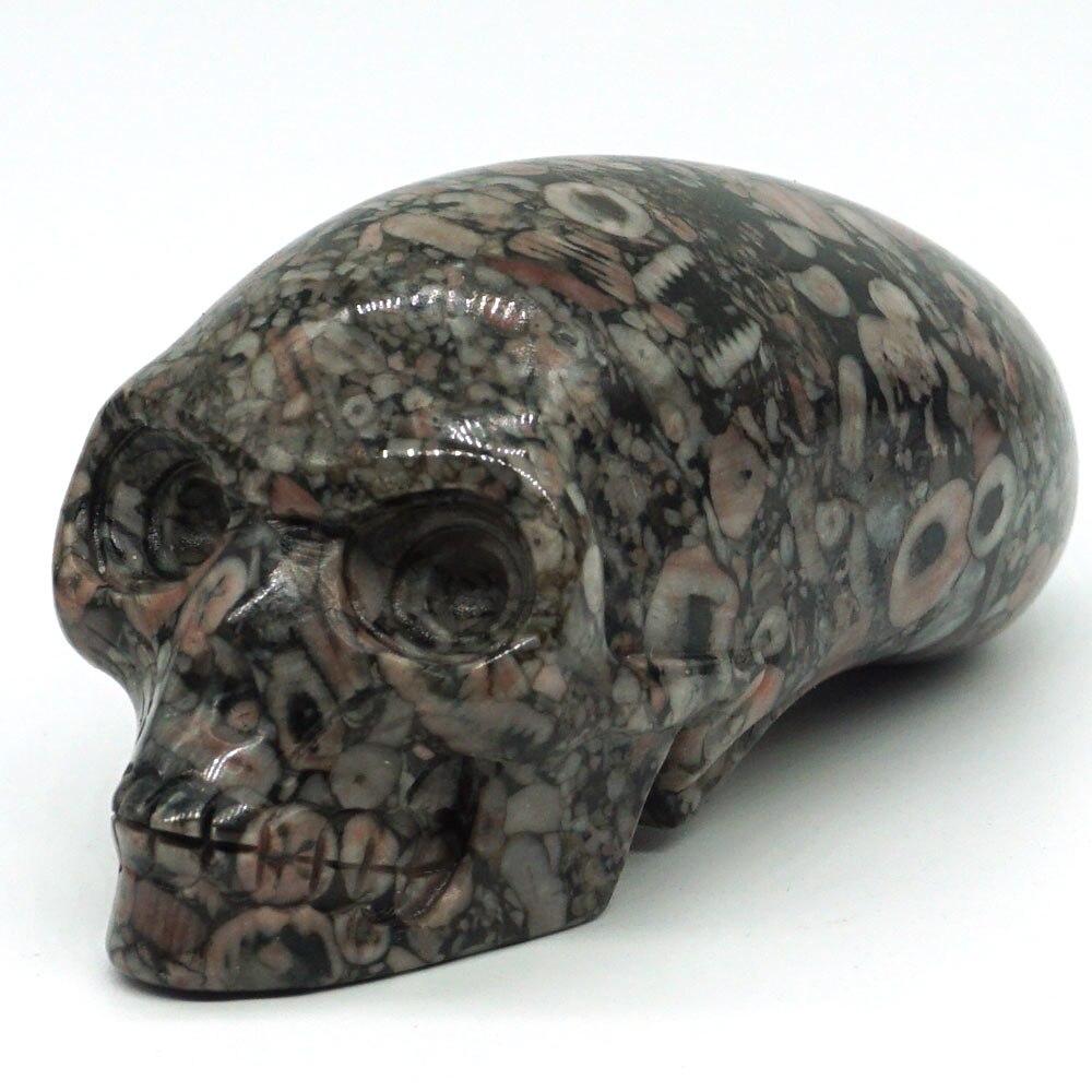 3 Crinoid Fossil Jasper Skull Stone Carved Chakra Healing Reiki Feng Shui Skull Decorative Crafts Home