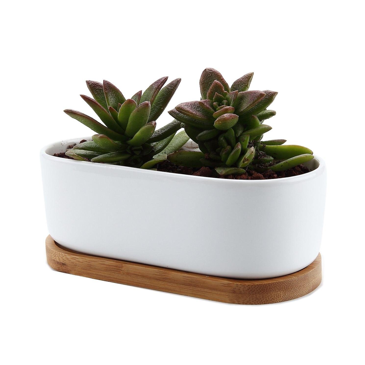 T4U Ceramic Rectangular Succulent Flower Planter Pot Maceta Bonsai Pots With Bamboo Tray Home Office Decoration