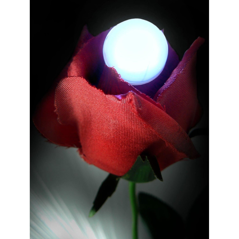 lightled na luz do partido de disco 03