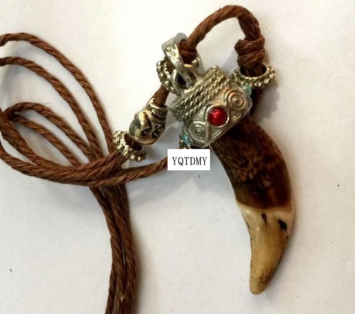 FREE SHIPPING yqtdmy 10 pcs Vintage Women Men Tibet Amulet Real Brown Wolf Teeth Fangs Pendant Surfer Rope Chain Necklace