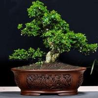 Ретро фиолетовый; песок горшок для дерева бонсай большой крытый BalconySimple садовый керамический Bosai горшок выбивает ZiSha Bosai