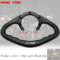 Motorcycle Accessories Passenger Handgrips Hand Grip Tank Grab Bar Handles Armrest Fit For YAMAHA FZ1 2006 2013 LOGO fz1