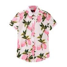 Dioufond Plus Size Floral Women Blouse Summer Turn-Down Collar Short Sleeve Blouse Shirt Women Print Casual Cotton Shirts 2018