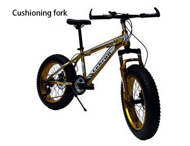 240607/20 zoll/männliche und weibliche studenten bike/4,0 große rad ...